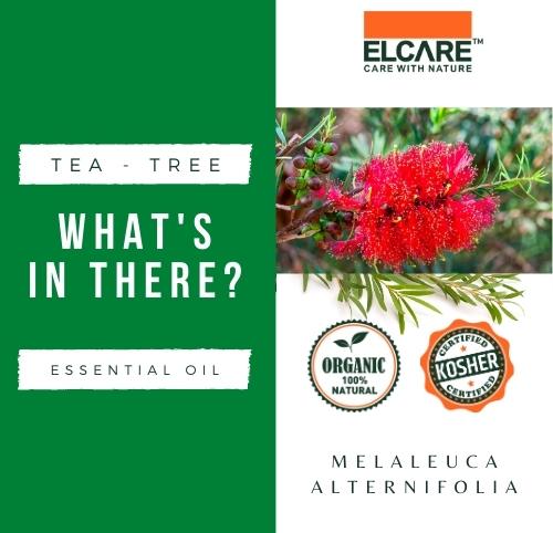 TEA-TREE Essential Oil